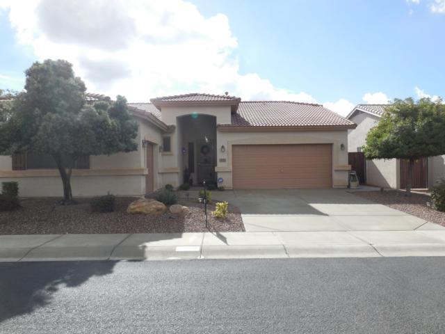 5911 W Oberlin Way, Phoenix, AZ 85083 (MLS #5868879) :: Conway Real Estate