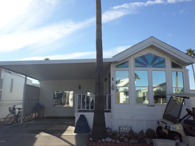 3710 S Goldfield Road, Apache Junction, AZ 85119 (MLS #5868888) :: The Daniel Montez Real Estate Group