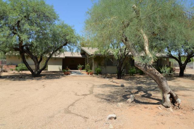11420 N Sundown Drive, Scottsdale, AZ 85260 (MLS #5868910) :: Conway Real Estate