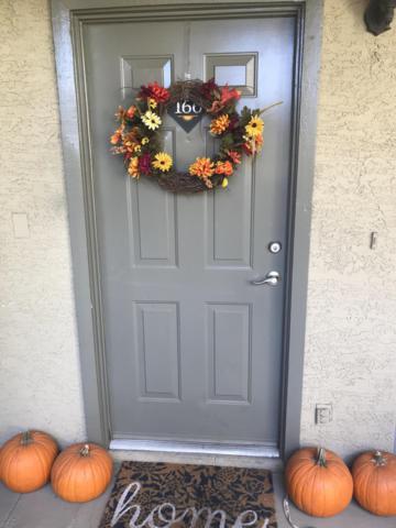 1331 W Baseline Road #166, Mesa, AZ 85202 (MLS #5868925) :: Conway Real Estate