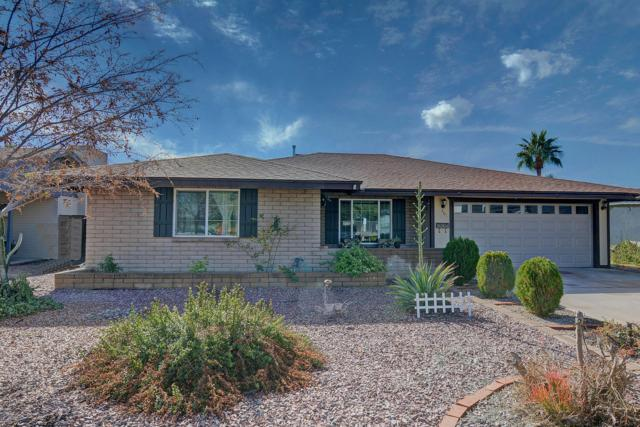 401 E Carter Drive, Tempe, AZ 85282 (MLS #5868936) :: Revelation Real Estate