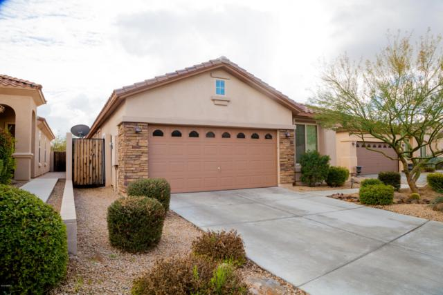 33125 N 40th Place, Cave Creek, AZ 85331 (MLS #5868943) :: The Laughton Team