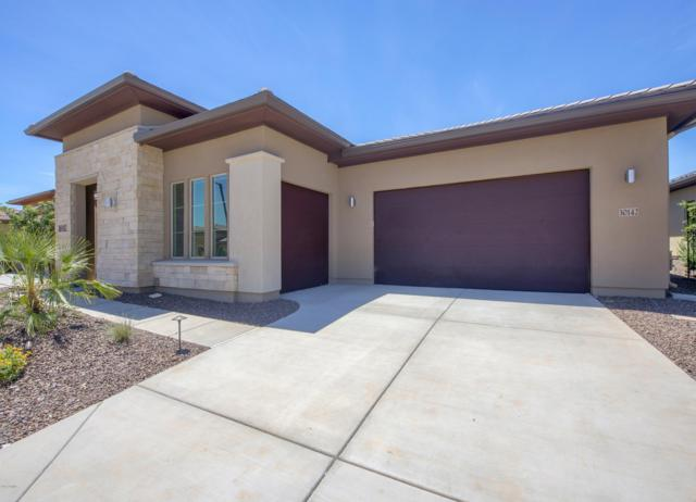30142 N Suscito Drive, Peoria, AZ 85383 (MLS #5868948) :: The Laughton Team