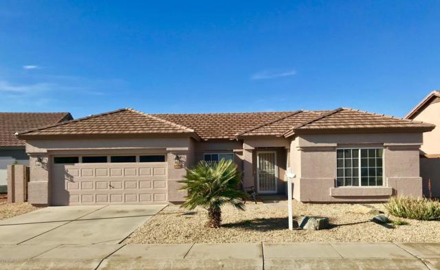 14941 W Lupine Lane, Surprise, AZ 85374 (MLS #5868950) :: Conway Real Estate