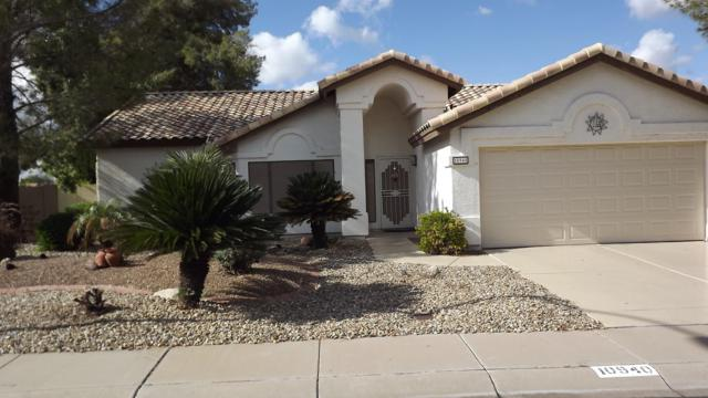 10940 W Tonopah Drive, Sun City, AZ 85373 (MLS #5868953) :: The W Group
