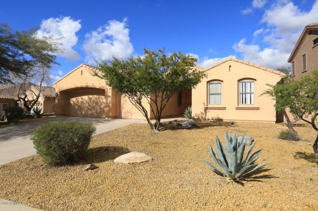 10668 E Acacia Drive, Scottsdale, AZ 85255 (MLS #5868954) :: Conway Real Estate