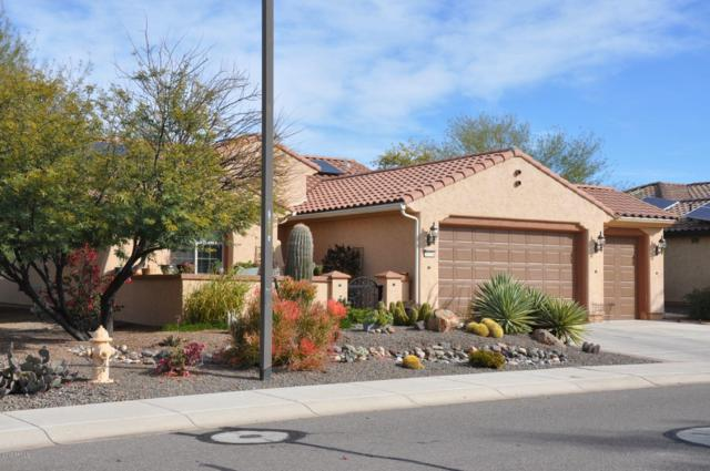 26234 W Horsham Drive, Buckeye, AZ 85396 (MLS #5868967) :: Conway Real Estate