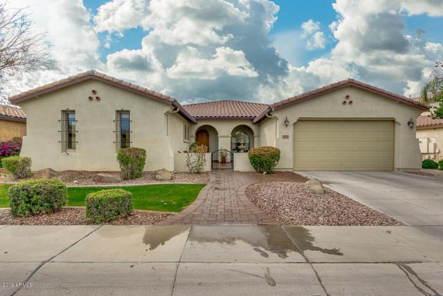 413 W Aster Drive, Chandler, AZ 85248 (MLS #5868998) :: The Garcia Group