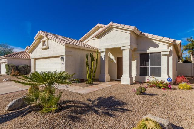 8642 E Mescal Street, Scottsdale, AZ 85260 (MLS #5869002) :: The Garcia Group