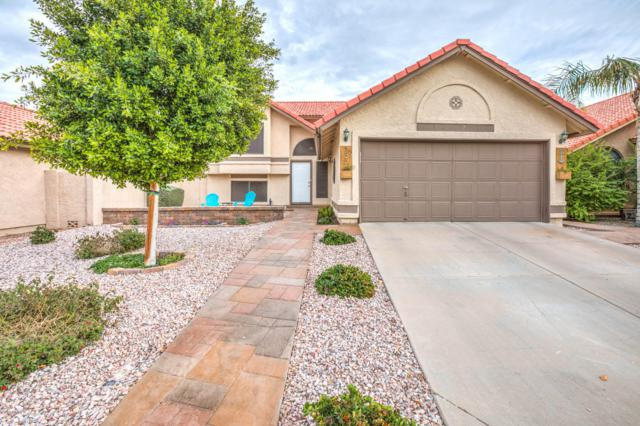 355 S Ocean Drive, Gilbert, AZ 85233 (MLS #5869009) :: The Jesse Herfel Real Estate Group