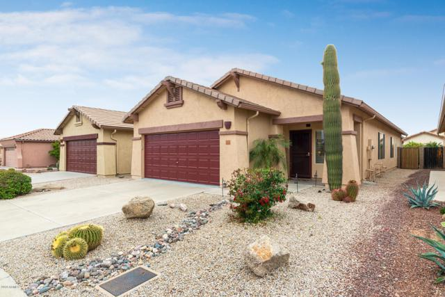 10388 E Second Water Trail, Gold Canyon, AZ 85118 (MLS #5869016) :: The Kenny Klaus Team