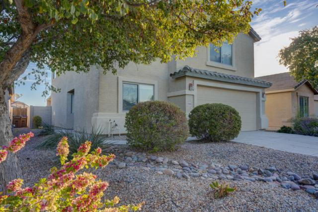 20665 N Herbert Avenue, Maricopa, AZ 85138 (MLS #5869018) :: Revelation Real Estate