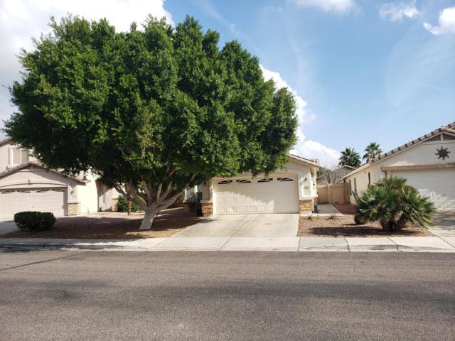 3221 N 130TH Avenue, Avondale, AZ 85392 (MLS #5869024) :: Brett Tanner Home Selling Team