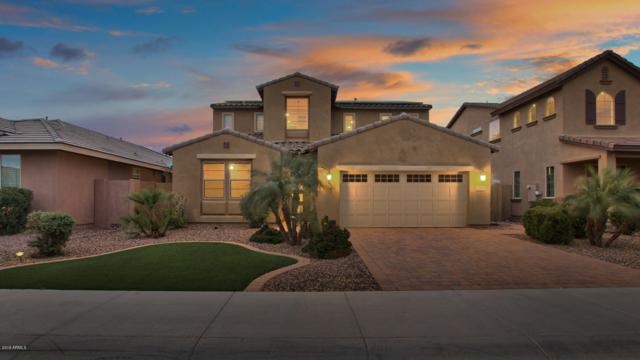 3392 E Plum Street, Gilbert, AZ 85298 (MLS #5869026) :: Yost Realty Group at RE/MAX Casa Grande