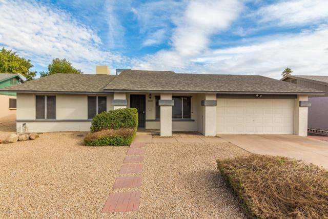 8613 N 53RD Drive, Glendale, AZ 85302 (MLS #5869032) :: neXGen Real Estate