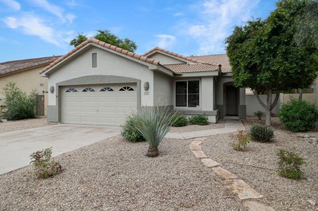 1459 W Enfield Way, Chandler, AZ 85286 (MLS #5869036) :: The Jesse Herfel Real Estate Group