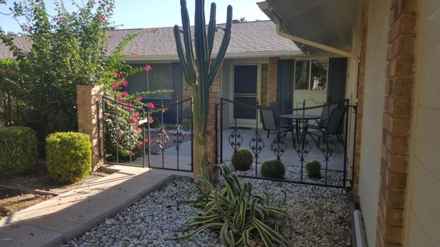 10106 W Kingswood Circle, Sun City, AZ 85351 (MLS #5869050) :: Yost Realty Group at RE/MAX Casa Grande