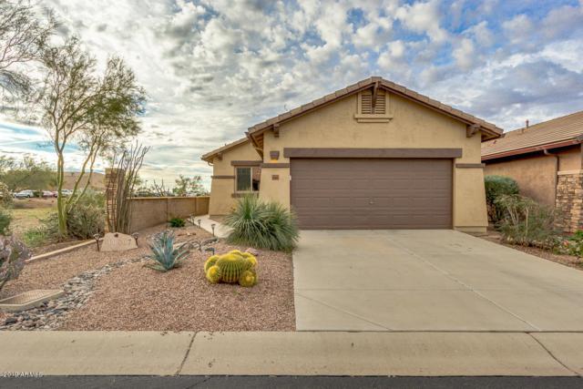 10867 E Secret Canyon Road, Gold Canyon, AZ 85118 (MLS #5869054) :: Revelation Real Estate
