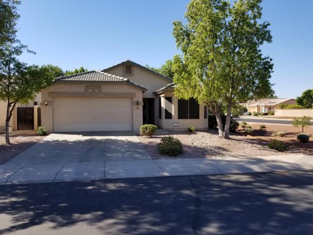 10817 W Windsor Avenue, Avondale, AZ 85392 (MLS #5869060) :: Brett Tanner Home Selling Team