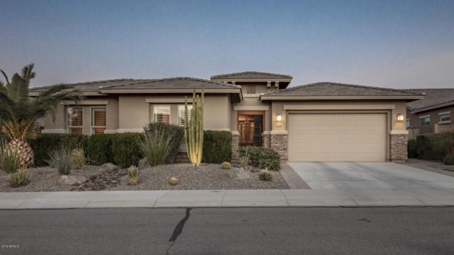6709 S Lyon Drive, Gilbert, AZ 85298 (MLS #5869061) :: Team Wilson Real Estate