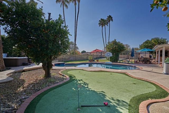 1851 E Huber Street, Mesa, AZ 85203 (MLS #5869068) :: The Jesse Herfel Real Estate Group