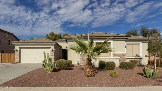 18468 E Macaw Drive, Queen Creek, AZ 85142 (MLS #5869088) :: The Jesse Herfel Real Estate Group