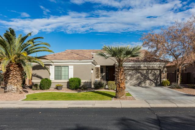 3456 E Kingbird Place, Chandler, AZ 85286 (MLS #5869125) :: Brett Tanner Home Selling Team