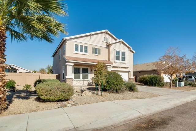 7174 W Belmont Avenue, Glendale, AZ 85303 (MLS #5869135) :: neXGen Real Estate