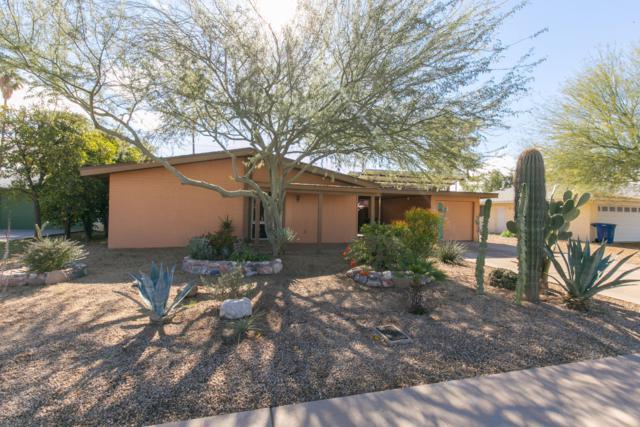 1245 E Laguna Drive, Tempe, AZ 85282 (MLS #5869157) :: Revelation Real Estate