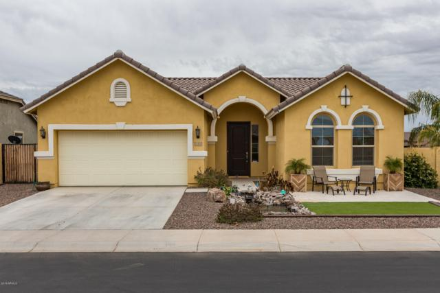 11501 E Sable Avenue, Mesa, AZ 85212 (MLS #5869174) :: The Pete Dijkstra Team