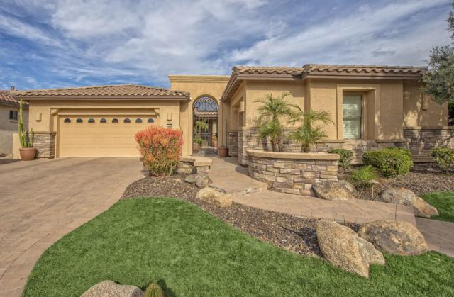 15970 W Mulberry Drive, Goodyear, AZ 85395 (MLS #5869178) :: The Sweet Group