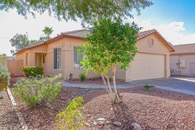 8173 W Pontiac Drive, Peoria, AZ 85382 (MLS #5869198) :: The Laughton Team