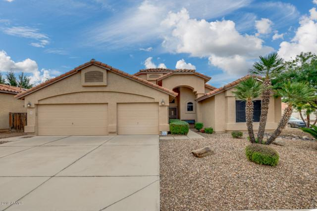 7417 E Lompoc Avenue, Mesa, AZ 85209 (MLS #5869204) :: Conway Real Estate