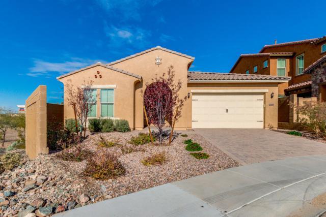 2146 W Red Fox Road, Phoenix, AZ 85085 (MLS #5869224) :: Conway Real Estate