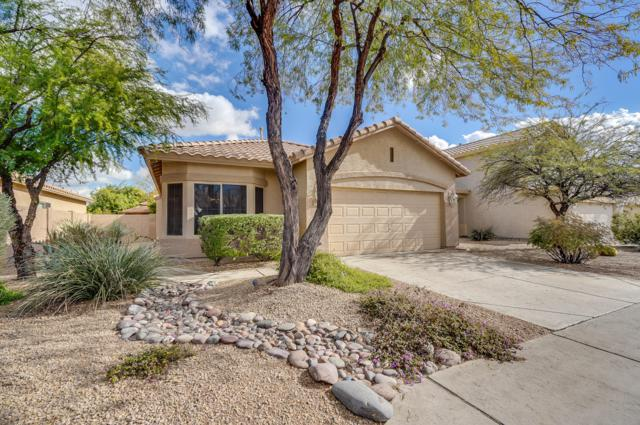 25205 N 40TH Lane, Phoenix, AZ 85083 (MLS #5869267) :: Brett Tanner Home Selling Team