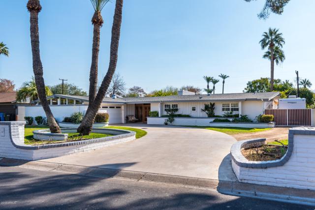 351 W Orangewood Avenue, Phoenix, AZ 85021 (MLS #5869276) :: Brett Tanner Home Selling Team