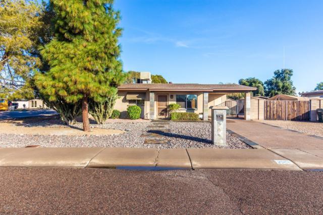2254 W Villa Maria Drive, Phoenix, AZ 85023 (MLS #5869279) :: Occasio Realty
