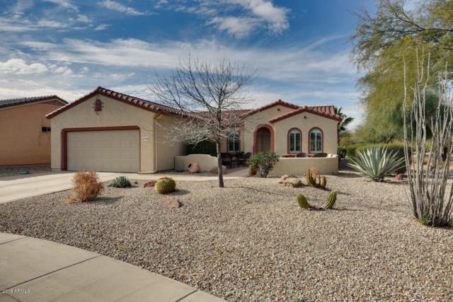 21438 N Olmsted Point Lane, Surprise, AZ 85387 (MLS #5869286) :: Brett Tanner Home Selling Team