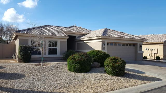 3112 N 150TH Drive, Goodyear, AZ 85395 (MLS #5869307) :: The Sweet Group