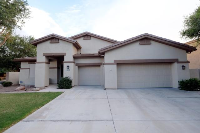 1025 W Silver Creek Road, Gilbert, AZ 85233 (MLS #5869313) :: Brett Tanner Home Selling Team