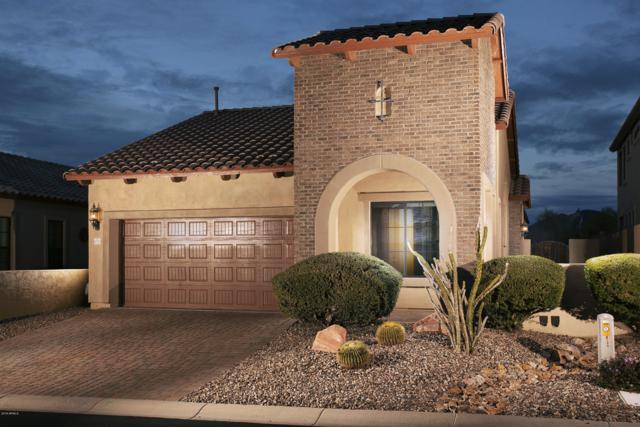 8720 E Ivy Street, Mesa, AZ 85207 (MLS #5869341) :: Brett Tanner Home Selling Team