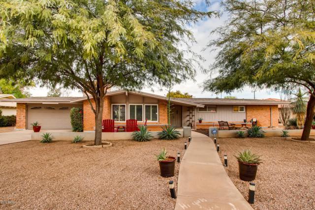 336 E Fairmont Drive, Tempe, AZ 85282 (MLS #5869346) :: Revelation Real Estate