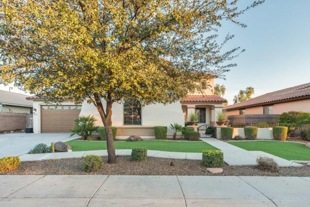 5483 S Cardinal Street, Gilbert, AZ 85298 (MLS #5869348) :: Revelation Real Estate