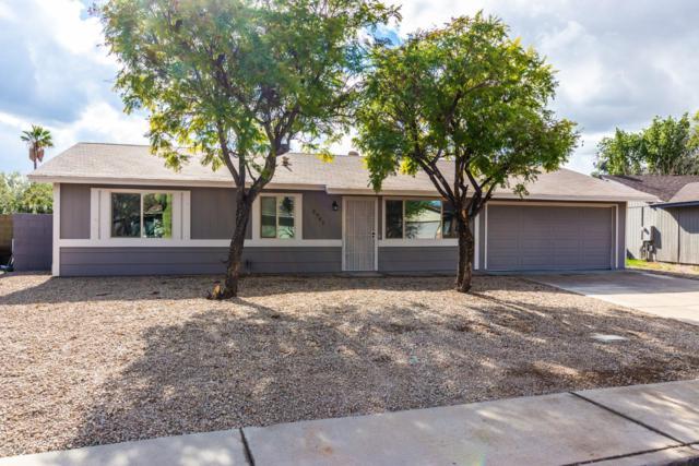 2941 E Michigan Avenue, Phoenix, AZ 85032 (MLS #5869368) :: The Property Partners at eXp Realty