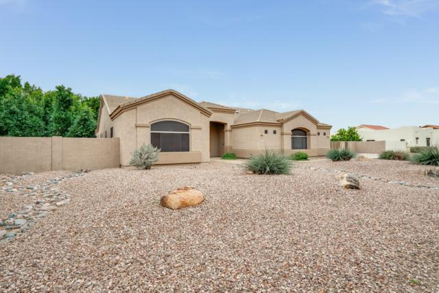 8123 W Monte Lindo Lane, Peoria, AZ 85383 (MLS #5869373) :: neXGen Real Estate