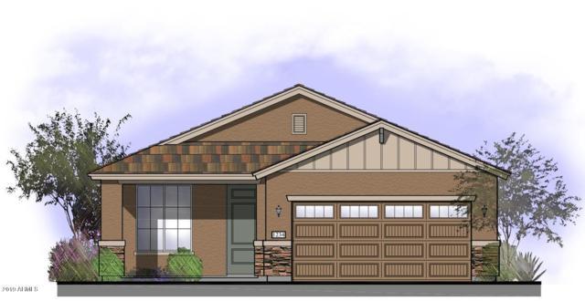 22083 N 181ST Avenue, Surprise, AZ 85387 (MLS #5869380) :: Brett Tanner Home Selling Team