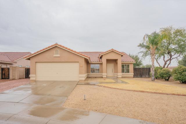 15037 W Elko Drive, Surprise, AZ 85374 (MLS #5869386) :: Brett Tanner Home Selling Team