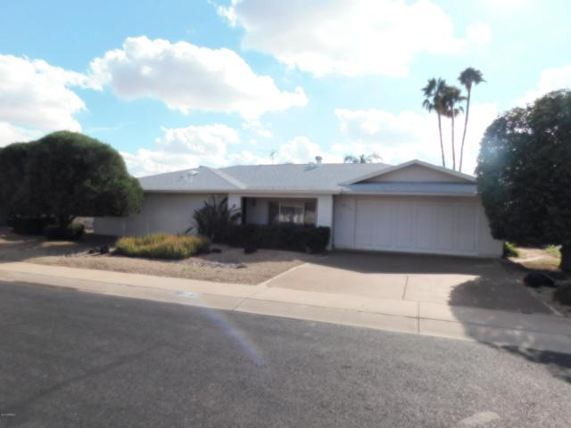 10317 W Pine Springs Drive, Sun City, AZ 85373 (MLS #5869388) :: The Property Partners at eXp Realty