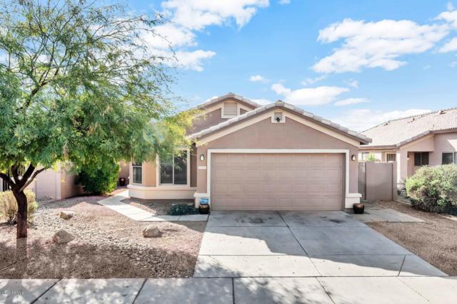 5435 W Sands Road, Glendale, AZ 85301 (MLS #5869421) :: The Pete Dijkstra Team