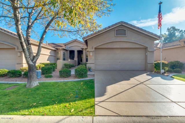 24417 S Golfview Drive, Sun Lakes, AZ 85248 (MLS #5869460) :: The Carin Nguyen Team
